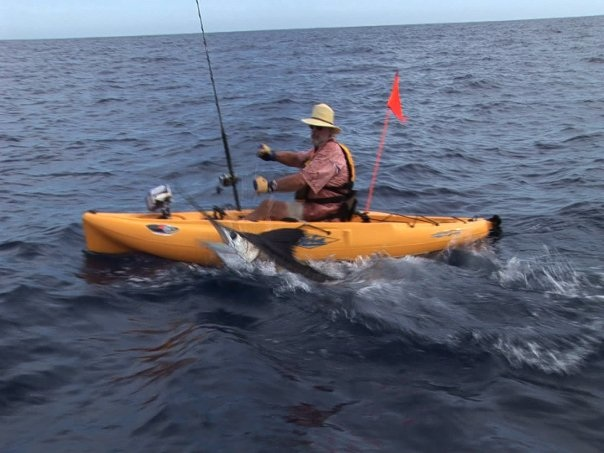marlin on kayak