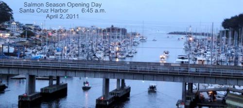 santa cruz harbor salmon boats
