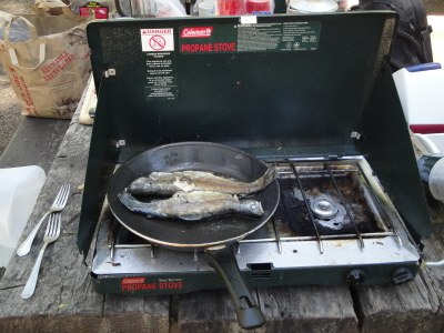 cooking rainbow trout